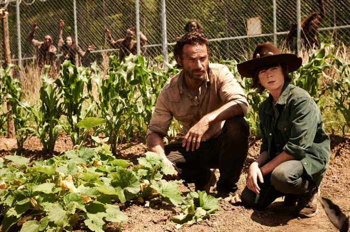 the-walking-dead-season-4_01