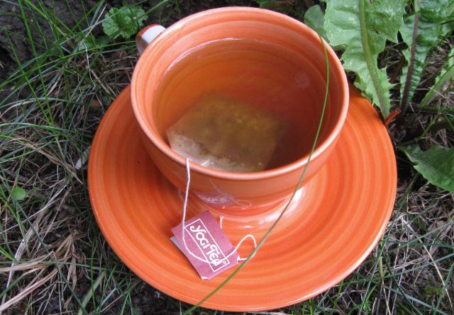 Yogi Tea, Yogi Tee, Tees, Tee-Sorten, Genuss, Natur, Bio