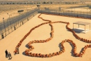 the-human-centipede-3_01