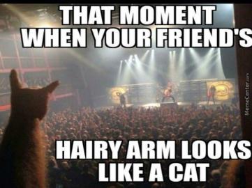 power-metal-meme_metal-cat-is-metal_o_4678071