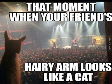 power-metal-meme_metal-cat-is-metal_o_4678071