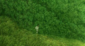 die-rote-schildkröte_01_wallpaper-promo-screenshot